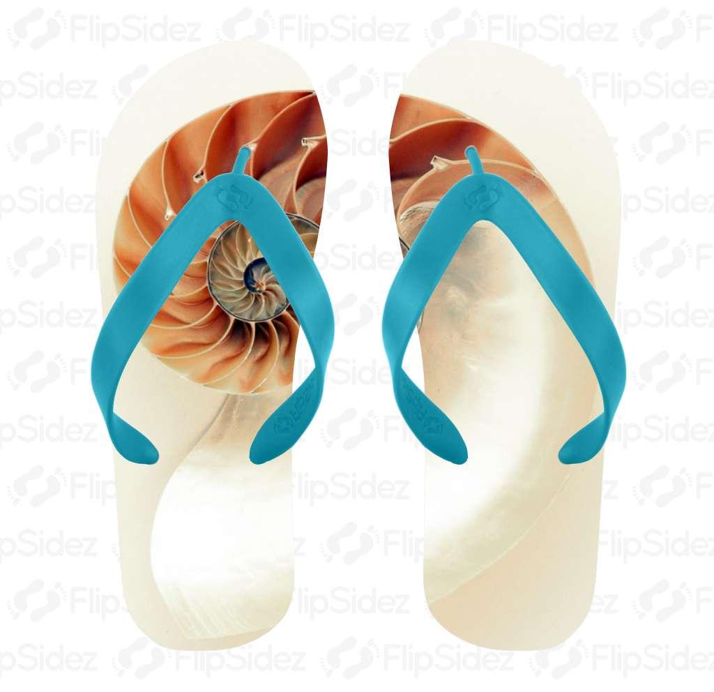 Nautilus Shell Flip Flops Flip Flops