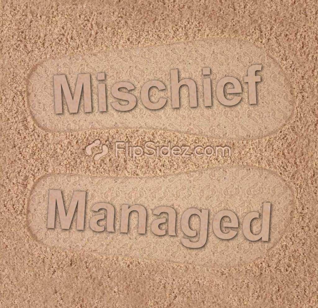 Mischief Managed Flip Flops