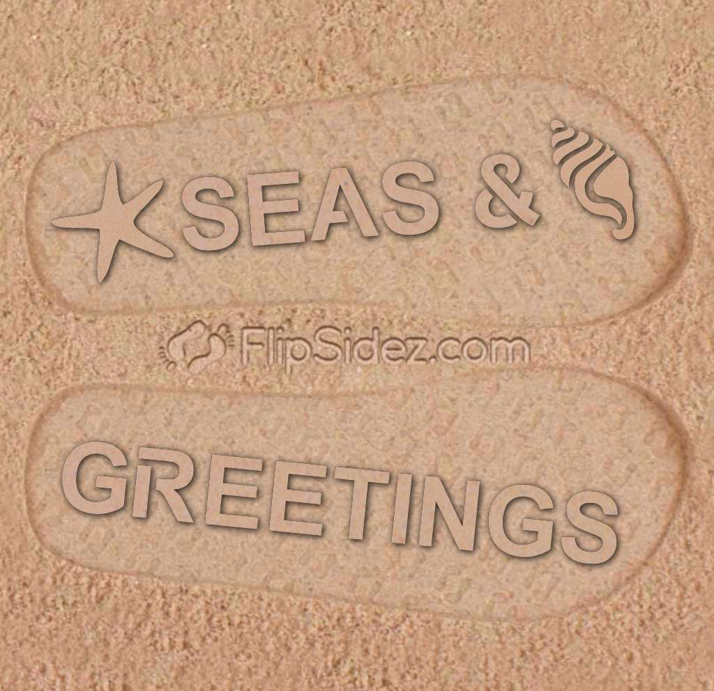 Seas & Greetings Flip Flops