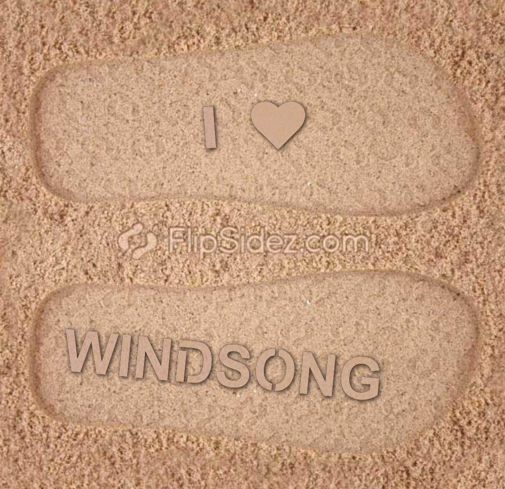 Windsong Elem. Supporter Flip Flops